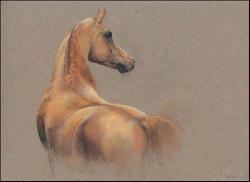 Как рисовать лошадей на бумаге